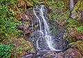 Rickenbach (Hotzenwald) Wasserfälle bei der Burgruine Wieladingen.jpg
