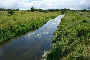 Rivers of Ireland - River Goul