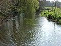 River Avon, Chisenbury - geograph.org.uk - 396880.jpg