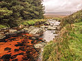 River Glenmacnass, Wicklow Mountains, Ireland (17405285881).jpg
