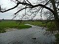 River Wey - downstream - geograph.org.uk - 739642.jpg
