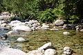 Rivière claire - Corse.JPG