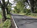 Road at Nixon's Corner - geograph.org.uk - 258439.jpg
