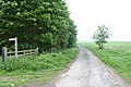 Road to West Ditchburn - geograph.org.uk - 833019.jpg