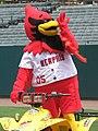 Rockey the Redbird 2007.jpg