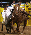 Rodeo3b2004-12-21.jpg