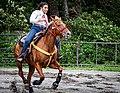 Rodeo in Panama 40.jpg