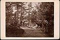 Romsdalen, 1896 (4478111583).jpg