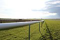 Rowley Mile track in Newmarket, UK.jpg