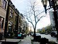 Rue Sherbrooke Ouest, Montréal 2005-11-10.JPG
