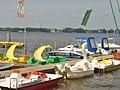 Ruebezahl - Am Mueggelsee (Mueggel Lake) - geo.hlipp.de - 36667.jpg
