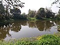 Ruined Nilkuthi and Pond at Manirampur in Hooghly 05.jpg
