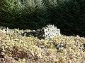 Ruined shepherd's hut - geograph.org.uk - 601056.jpg