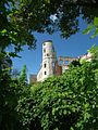 Ruiny zamku w Janowcu 8.jpg