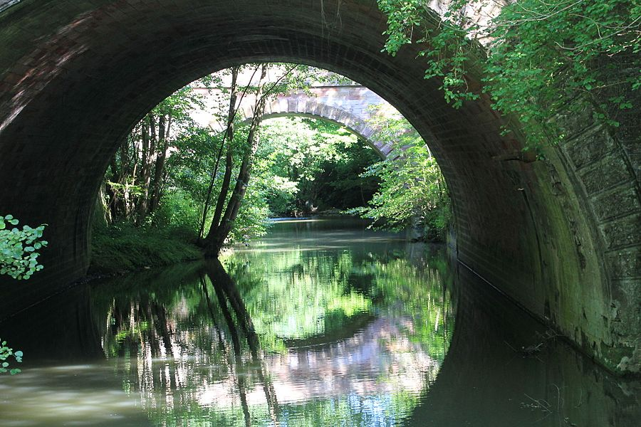 Ruisseau d'Achen, près de Sarreguemines - ou: Nature 2.0