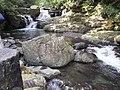 Ruizi Creek 蚋仔溪 - panoramio (1).jpg