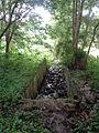Ruschdahlmoor (Lesumer Moor), Bremen 2.JPG