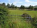 Rushfield Townland - geograph.org.uk - 1380290.jpg