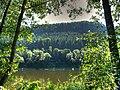 Rvier Elbe Scenery - panoramio - Jynto.jpg