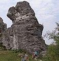 Sówka DK14.jpg