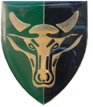117 Battalion - 117 Battalion emblem