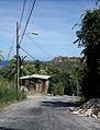 Saint Andrew, Barbados 067.jpg