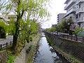 Sakagawa in Matsudo City 20120410a.jpg