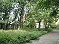 Sankt-Peterburg 2012 4646.jpg