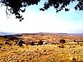 Sarıoğlan-Bozkır-Konya, Turkey - panoramio (7).jpg