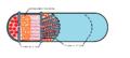 Sarcoplasmic reticulum T system.png