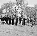 Sardana spelende orkest en dansende mensen op een weide, Bestanddeelnr 254-0857.jpg