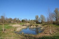 Schleswig-Holstein, Rantrum, Naturerlebnisraum NIK 4923.jpg