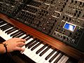 Schmidt Eightvoice Polyphonic Synthesizer - right angled (2016-04-07 13.17.24 by kpr2) Synthesizer-1515574.jpg