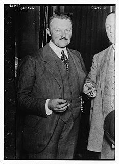Ernst Scholz German politician