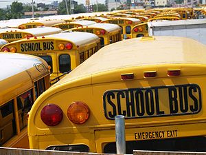 The tops of many school buses.