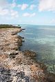 Sea shore at the Iguanas island near Cayo Largo.jpg