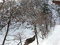Seoraksan National Park trip Feb 2014 57.JPG
