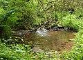 Sheep Pond - geograph.org.uk - 1365096.jpg