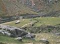Sheepgathering at Blaen-y-Nant, Bwlch Llanberis Pass - geograph.org.uk - 306588.jpg