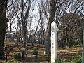 Shimizuyama ikoi no mori nerima 2015-2.jpg
