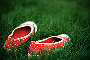 A pair of shoes on the grass.