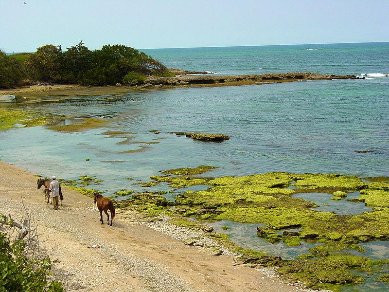 File:Shore at Puerto Plata - Dominican Republic.jpg