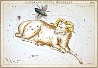 Sidney Hall - Urania's Mirror - Aries and Musca Borealis.jpg