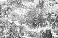 Siege of Danzig 1577.PNG