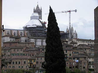 Siena Cathedral distant.jpg
