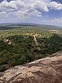 Sigirya Forest.jpg
