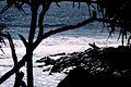 Silhouette of surfer.jpg