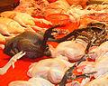 Silky fowl chicken.JPG
