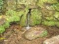 Simeria Dendrological park - spring - panoramio.jpg