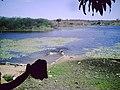 Sitio boa vista prop chicao - panoramio.jpg